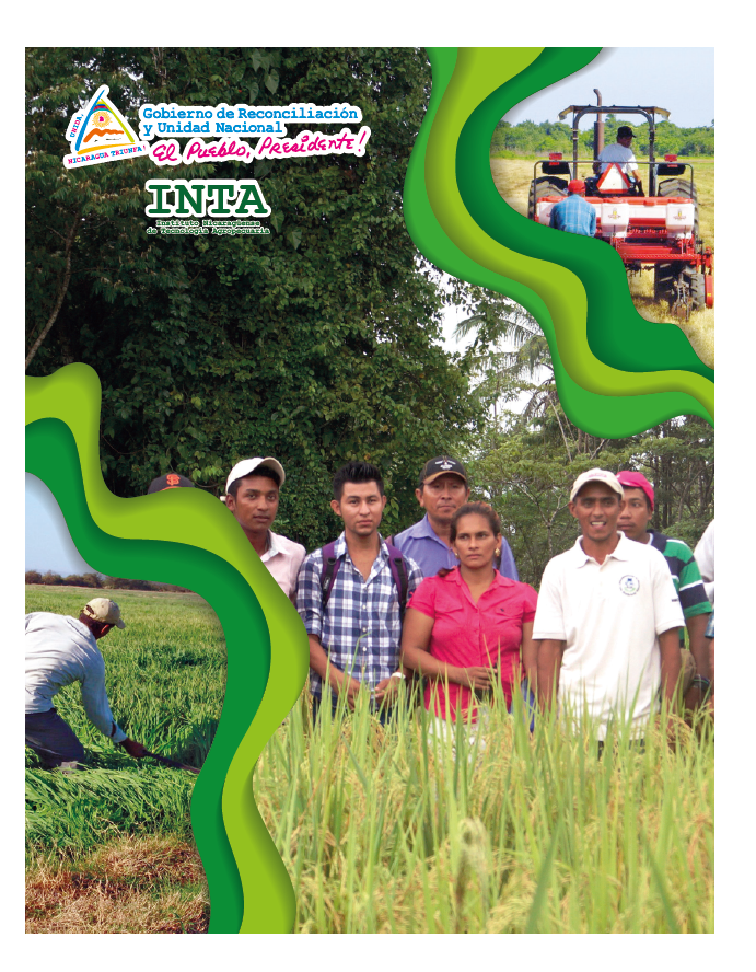 Rainfed Rice RECOMMENDATIONS FOR ITS PRODUCTION