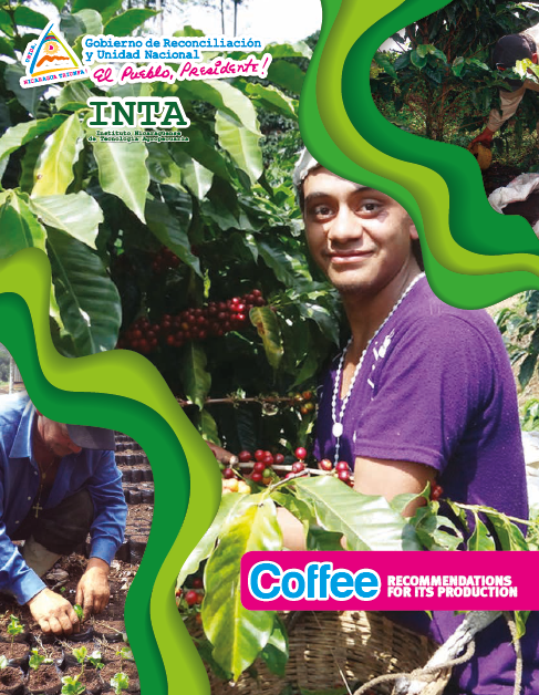 Coffee RECOMMENDATIONS FOR ITS PRODUCTION