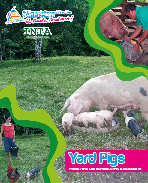 Yard Pigs PRODUCTIVE AND REPRODUCTIVE MANAGEMENT