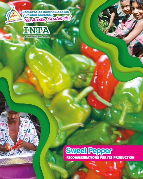 Sweet Pepper RECOMMENDATIONS FOR ITS PRODUCTION