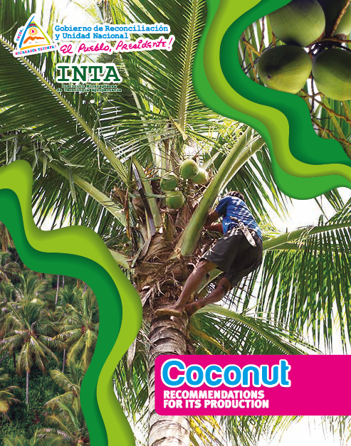 Coconut RECOMMENDATIONS FOR ITS PRODUCTION