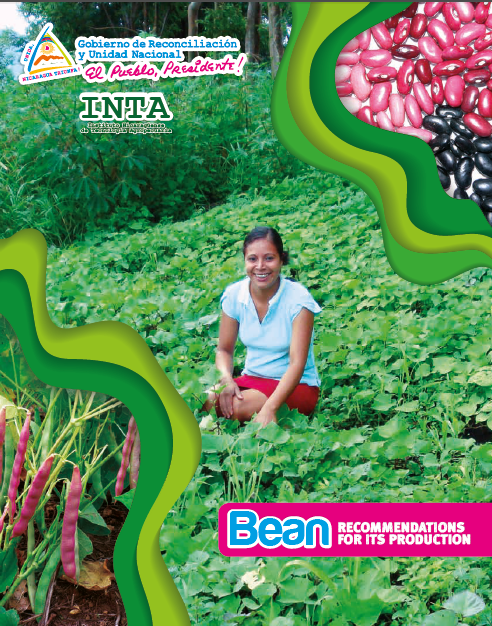 Bean RECOMMENDATIONS FOR ITS PRODUCTION