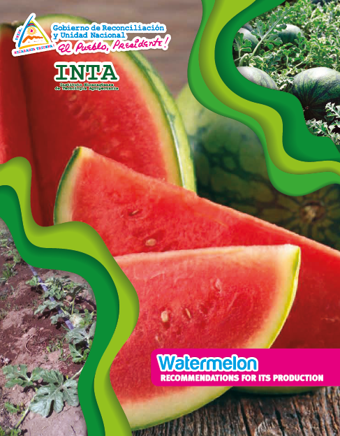 Watermelon RECOMMENDATIONS FOR ITS PRODUCTION