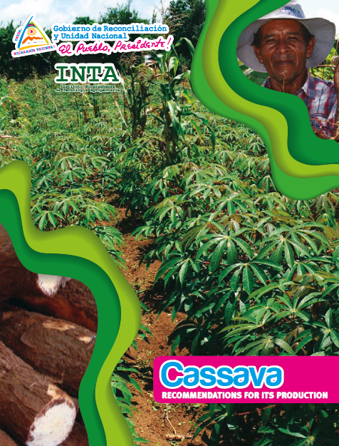 Cassava RECOMMENDATIONS FOR ITS PRODUCTION